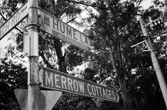 Sign - Hume Lane, Merrow Cottages (Matthew Paul Argall) Tags: canonsnappy20 fixedfocus 35mmfilm blackandwhite blackandwhitefilm kentmere100 100isofilm sign streetsign