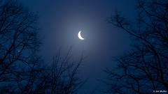 Crescent moon with Venus and Jupiter (Jim Muller) Tags: moon crescent venus jupiter nightsky crescentmoon