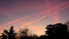 DSCN8401 lever de soleil 02 (aube rouge rose nuage) Cergy (jeanchristophelenglet) Tags: cergyfrance leverdesoleilaube sunrisesunup nascerdosolalvorada arbre tree arvore hiver winter inverno bleu blue azul rose pink rosa rouge red vermelha
