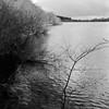 Ogden Water (Richie Rue) Tags: mamiya tlr mediumformat squareformat 120 6x6 film analogue foma fomafomapan200 championpromicrol ishootfilm istillshootfilm filmsnotdead intimatelandscape landscape monochrome blackandwhite fineart naturereserve reservoir dam northern outdoors yorkshire halifax