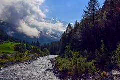 Il torrente Màllero a Chiareggio (giorgiorodano46) Tags: luglio2015 july 2015 giorgiorodano valmalenco valtellina lombardia italy chiareggio alpeventina hiking escursionismo torrente màllero