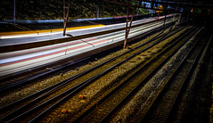 Last Train (Matthew Bickham) Tags: zurich train night city speed fast travel