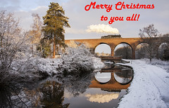 Merry Christmas (MHuckfieldPhotography) Tags: 43106 flyingpig britishrailways br steamengine steam steamtrain fallingsandsviaduct staffordshireandworcestershirecanal canal canaltowpath kidderminster worcestershire severnvalleyrailway svr water reflection viaduct snow cold winter steamrailway locomotive transport heritage heritagerailway preservation tourism canon40d canon canonphotography 40d dslr mhuckfieldphotography tree trees sky