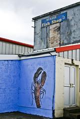fish shop (OmaWetterwachs) Tags: irland ireland eire travel fish shop hafen lobster urbex urban port