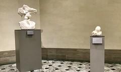 #LegionofHonor #SanFrancisco (Σταύρος) Tags: musee marblesculptures marble museum sfist thelegionofhonor legionofhonor sanfrancisco kalifornien californië kalifornia καλιφόρνια カリフォルニア州 캘리포니아 주 cali californie california northerncalifornia カリフォルニア 加州 калифорния แคลิฟอร์เนีย norcal كاليفورنيا sf city thecity санфранциско sãofrancisco saofrancisco サンフランシスコ 샌프란시스코 聖弗朗西斯科 سانفرانسيسكو iminyuziyamu amgueddfa museo музей museu 박물관 博物館 músaem halehōʻikeʻike μουσείο musée muzej թանգարան متحف