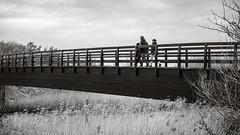 Passing By (Poul-Werner) Tags: bwtrix blackandwhitephotos danmark denmark lindholmfjordpark nrsundby 53mm bridge bro documentary family landscape landskab natur nature reportage scenery street nørresundby northdenmarkregion dk