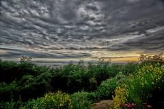 Lago Di Trasimeno (jo.misere) Tags: umbrie italy italie lago meer trasimeno