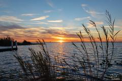 Sunset over Lake Washington (Michael Seeley) Tags: canon lakewashington melbourne mikeseeley sunset sundog