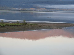 Shuswap Morning (jamica1) Tags: shuswap lake salmon arm bc british columbia canada