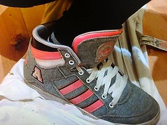 Adidas sneaker (SneakerManiac) Tags: adidas shoes sneakers skateshoes