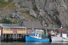Quidi Vidi Cliff (peterkelly) Tags: digital canon 6d northamerica canada newfoundlandlabrador stjohns quidividi cliff rock rocky boats boat fishing dock building water harbour harbor ladder