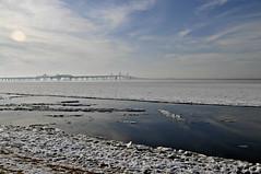 Icy Bay and Bridge (Throwingbull) Tags: chesapeake bay terrapin beach park winter snow ice frozen bridge kent island stevensville md maryland