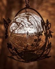 Reflective Wonder (brandonw6622) Tags: ball shiny mirror black bright bokeh sony sonya6000 orange park field tree nature outdoors grass garden ornament