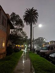 22,228 (joeginder) Tags: jrglongbeach rain 9th street linden longbeach night