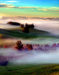 Early Morning Fog looking south east toward Petaluma (Vern Krutein) Tags: tworockranch petaluma sonomacounty earlymorningfogoverthevalley hills trees bucolic clouds morning eucalyptustrees mountain northerncalifornia nature scenics travel natural scenery geoform landscape wilderness usa oaktree flora branches woodlands vegetation scenes quiet serene repose tranquilly california