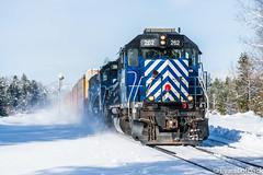 MRL 262 East at Heron, MT (evanlofback) Tags: railroadmrl 4thsub enginemrl mrl262 sd402 standardcab manifest hspolau heron sunny winter snow