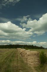 Puy des Pouges (serjinta) Tags: nature millevaches puydespouges pnrmillevaches foin été vert landscape paysage ciel bleu nuages loin