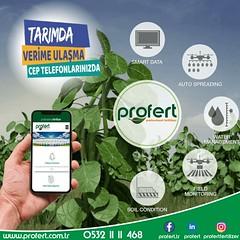 profert mobil (Profert Gübre) Tags: sebze seracılık sebzecilik sera seed season sevgi sulama damlama domates fertilizer profert