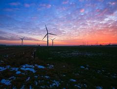 Bosbüll (M. Warfsmann) Tags: sonne sonnenuntergang schleswigholstein norddeutschland northgermany nordfriesland bosbüll niebüll schnee windkraftanlage windmill windpark wolken canon600d canon1022mm canon1022