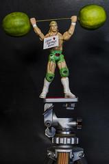 Billy says... (Paul B0udreau) Tags: wah favoat nikkor50mm18 photoshop canada ontario paulboudreauphotography niagara d5100 nikon nikond5100 raw naturallight wrestler figurine actionfigure lime sign