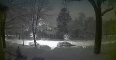 Winter Wonderland at Night (edgoldstein007) Tags: cold blizzard webcam winter snow snowstorm