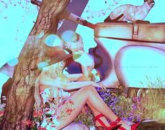 @ SENSE Event SL (Katia Lavecchia) Tags: sensesevent backdrop cats scooter flowers