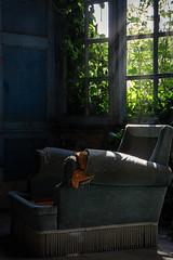 Château de l'écrivain (Fla(v)ie) Tags: urbex urbexfrance chateau châteauabandonné château castle abandoned abandonné abandonedhouse abandonedcastle decay old vieux light sunlight lumière rayonsdesoleil fauteuil chair