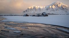 Morning in Lofoten (Sue MacCallum-Stewart) Tags: lofoten norway morning seascape sand patterns mountains snow winter landscape