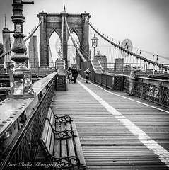 Brooklyn Bridge Walkway, NYC (broadswordcallingdannyboy) Tags: ny usa us america newyork copyright leon reilly eos7d eflens cityscape canon winter creative lightroom metropolis iconic 2019 newyorkcity reflection lights citylights newyorkstateofmind newyorkminute donotcopy leonreilly eastcoast nyc city copyrightleonreillyphotography newyorkwinter february2019 brooklyn bridge brooklynbridge bw blackwhite mononyc mono