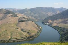 Douro river and its vineyards,  UNESCO World Heritage Site (eduardovales) Tags: douro altodourovinhateiro portugal vinhas paisagem landscape wineyards
