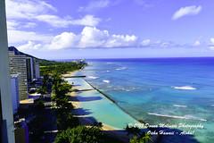 OAHU-HAWAII_1A54185-01 (Donna Molinari Photography) Tags: sanjose ca usa