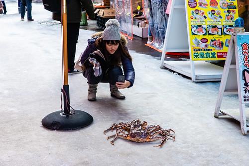 Hakotate, Hokkaido / 北海道函館