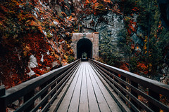 Magically Beautiful Tunnel (Top KM) Tags: park canada autumn bc travel fall bridge tunnel footbridge explore exploration beautiful british columbia no person outdoors tunnels othello 500px vancouver hike landscape old tourism historic historical provincial footpath stone