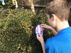 Easter Egg hunt stock photo (bmstores) Tags: easter crafts decorate crafty design colouring kids children child boy young entertainment summer spring sunday drawing egg hunt eggs sun sunny light garden outdoor activity fun