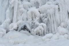 Winter art (tmo222) Tags: water falls frozen winter nature tiffanyfalls hamilton canada