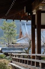 Tenryuji, Arashiyama, Kyoto, Japan (Plan R) Tags: tenryuji temple arashiyama kyoto traditional column tree roof tile nikon d7000