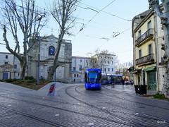 Montpellier (jc.d the cycling photographer) Tags: france francese montpellier montpelliermétropoleméditerranée corum languedocroussillonmidipyrénées hérault languedoc tam tram tramway ligne1 ligne4