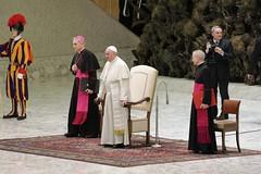 Udienza Papa Francesco