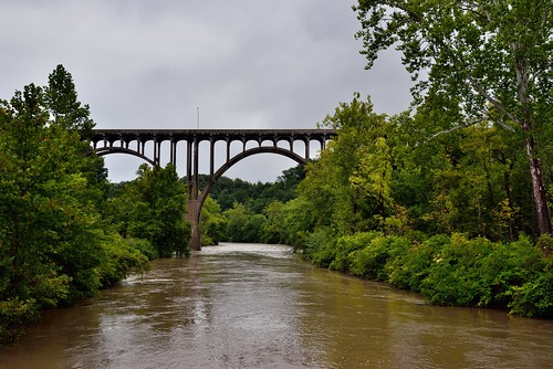 I Walked Amongst the Trees and Let Those Polite, Meaningless Words Be Cast Upon the Waters of a River Flowing By...  (Cuyahoga Valley National Park)