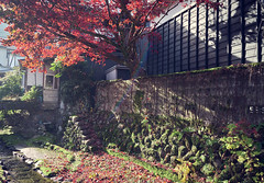 Traditional Japanese streets in autumn (KaeriRin) Tags: autumn red leaves street peaceful sunny cross process colourful colorful brightcolors sony7m2 sony alpha 28mm 28mm20 mountain tree sun rays blue green rainbow wall