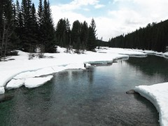 Glacier Waters ... (Mr. Happy Face - Peace :)) Tags: snow glacier lakelouise banff parkway tree forest sky clouds hiking outdoors nature spring weather art2019 scenery landscape cans2s alberta canada albertabound