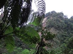 IMG_5859 (kenner116) Tags: 台灣 taiwan pingxi 平溪 新北 newtaipei 孝子山 xiaozishan 普陀山