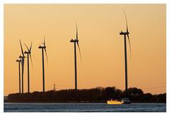 Nieuwe Waterweg sunset (leo.roos) Tags: windmill windmolen windturbine sunset zonsondergang maassluis nieuwewaterweg ship nedship a7iii sonyfe100400mmf4556gmoss sel100400gm sonyfe1004004556 darosa leoroos
