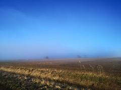 Dimman lättar (Annica Spjuth) Tags: morgon åker dimma gomd gömd fotosondag fs190414 vår