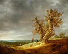 Jan van Goyen. Landscape with Two Oaks. 1641. (arthistory390) Tags: rijksmuseum
