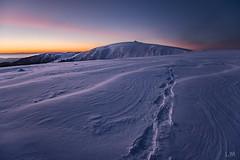 Chaud/Froid (Manonlemagnion) Tags: paysage nature hiver neige froid matin lumière rose orange bleu sunrise hohneck vosges vent montagne nikond810 1635mmf4