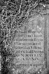 _DSC1427.jpg (Hideous Elf) Tags: abbey chruch detail grave lights melrose melroseabbey shadow stone