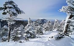 Mt. Kitayokodake 4 (@yoshiki) Tags: winter snow sky cloud mountain japan landscape tree wood