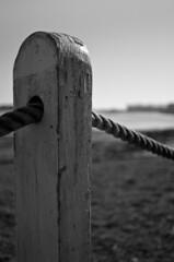 Fence post (sam.naylor) Tags: uk hayling island sussex chichester britain sea seaside coast pentax dslr digital 28mm black white monochrome sun warm contrast