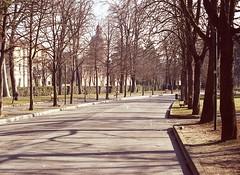 Public Park !!! (fondazza1943) Tags: olympus om4 bologna italy kodak
